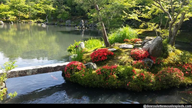 Arashima jardin japonais