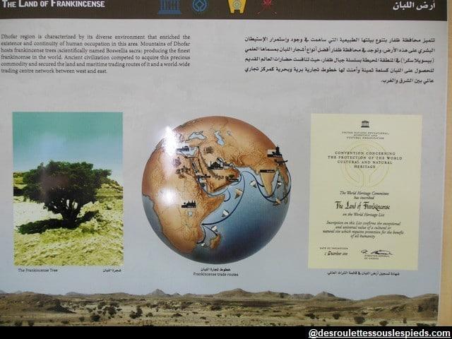 Dhofar-terre-d'encens