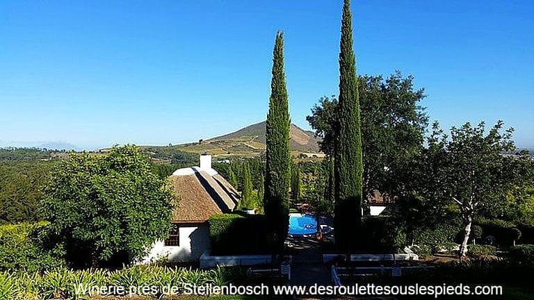 Infos pratiques afrique du sud Winerie Stellenbosch