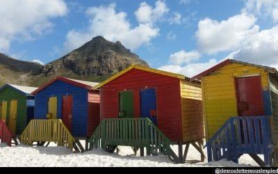 L'Afrique du sud en pratique -tout pour préparer votre voyage