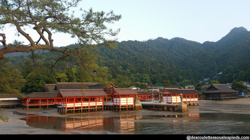 île de Miyajima Japon Sanctuaire d'Itsukushima :