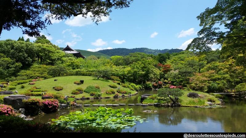 Nara Isueien jardin japonais