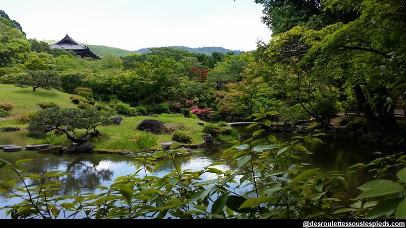Nara Isueien vue sur pagode et montagne