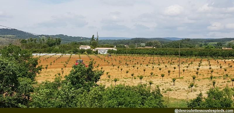 veloroute calavon jeunes fruitiers