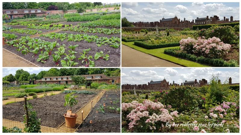 Grand Londres Hampton court potager et jardin