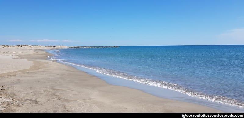 visiter la camargue plage proche du grau de la dent