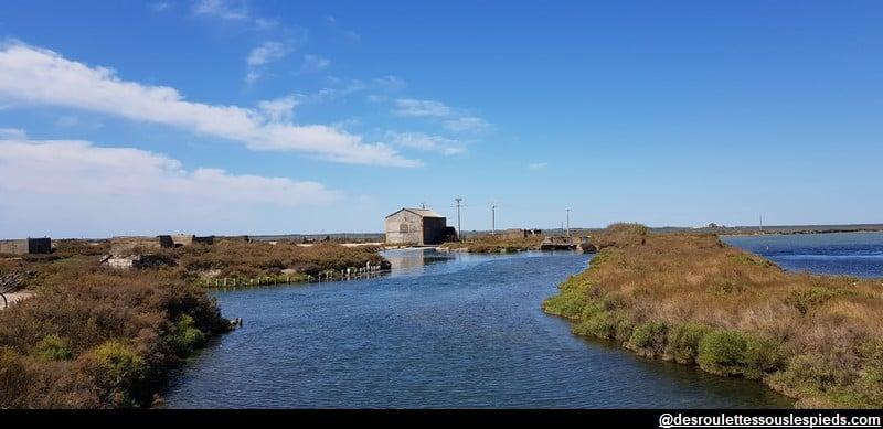 visiter la camargue station de pompage marais salants