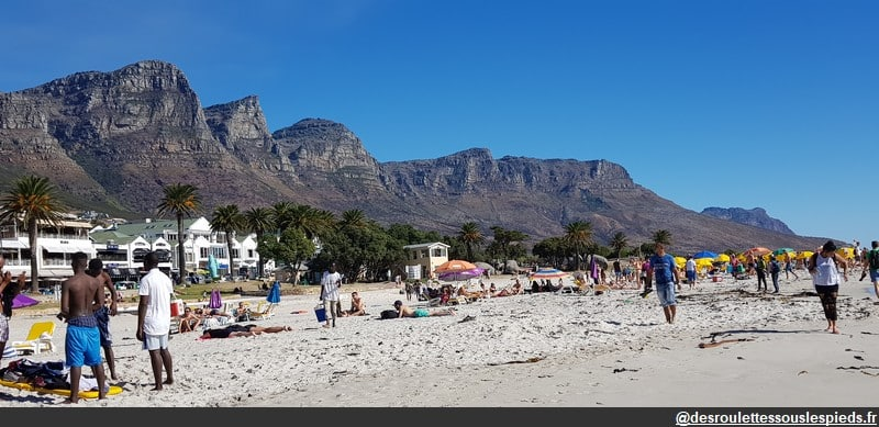 voyager sereinement en afrique du sud