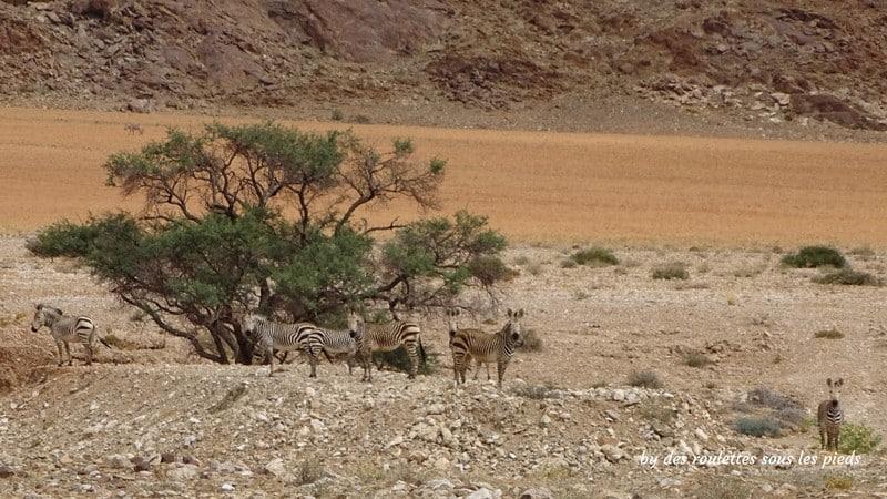 road trip Namibie gaub pass