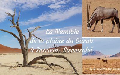 Road trip Namibie 2: le sud ouest Aus, Luderitz, Sesriem