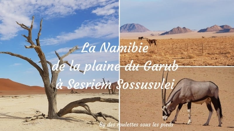 comment visiter la nambie la plaine du Garub et Sesriem