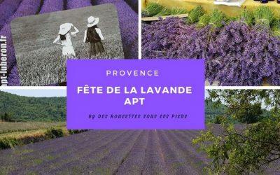 Où et quand voir de La lavande en Provence dans le Vaucluse : fête de la lavande à Apt