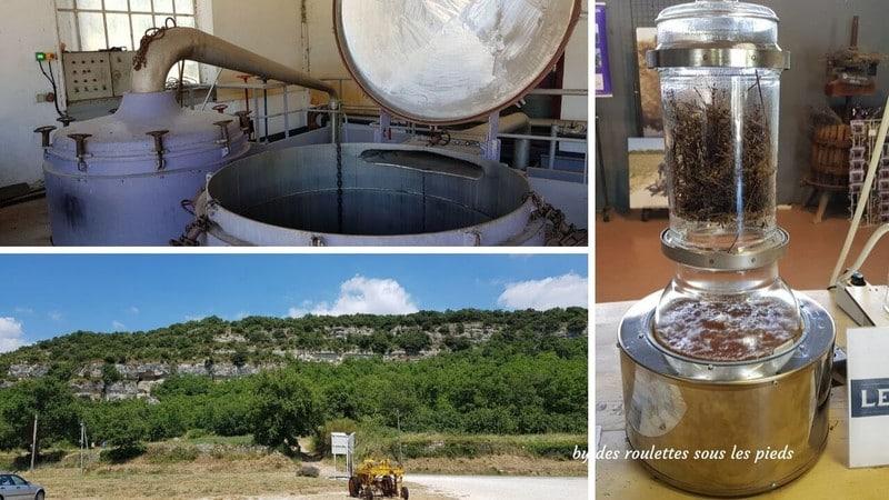 voir de la lavande en provence distillerie les agnels