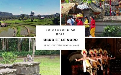 Quoi faire au départ d'Ubud ? Visiter Bali du Nord et de l'Est