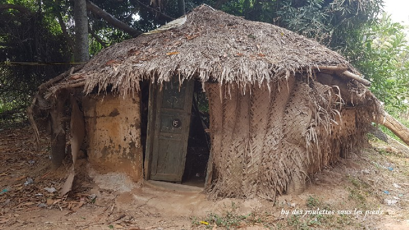 visiter la région de tanjore au tamil nadu habitat paysan