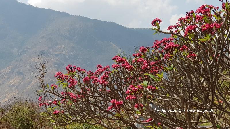 visiter le nord-ouest du tamil nadu