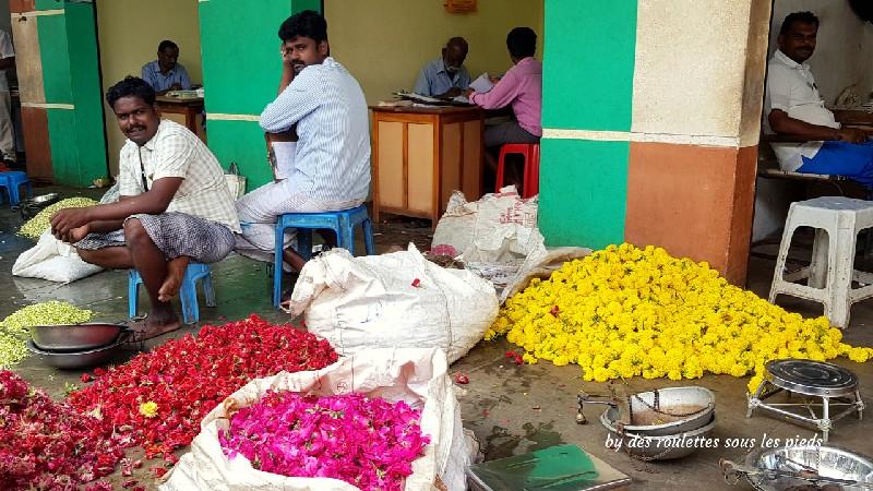 visiter le nord-ouest du tamil nadu marché de nilakottai
