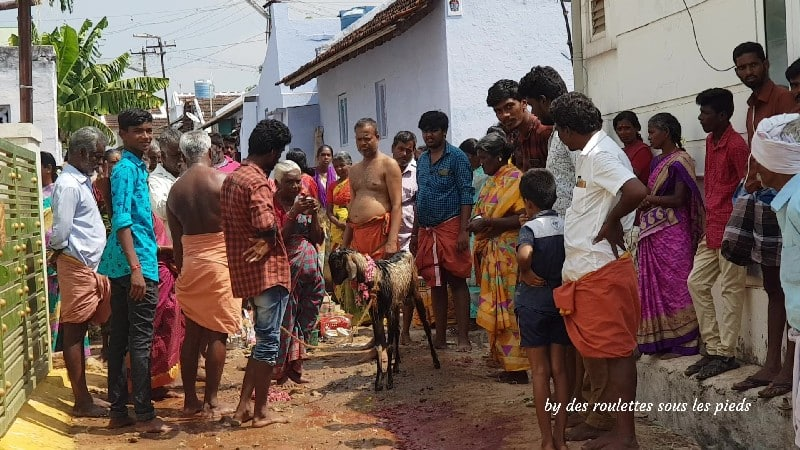 visiter le nord-ouest du tamil nadu vettaikaranpudur