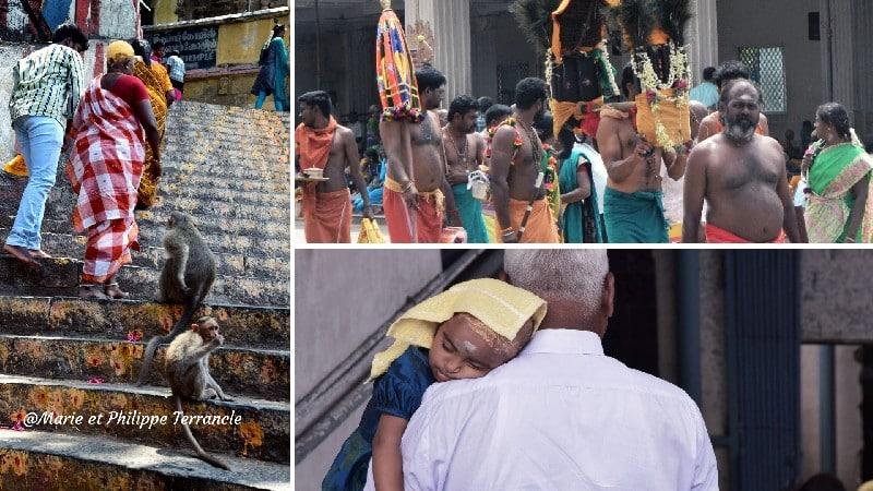 visiter le nord-ouest du tamil nadu temple de palani pélerinage