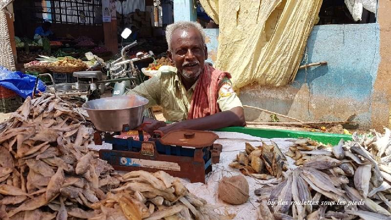 visiter le nord-ouest du tamil nadu marchands de poissons séchés