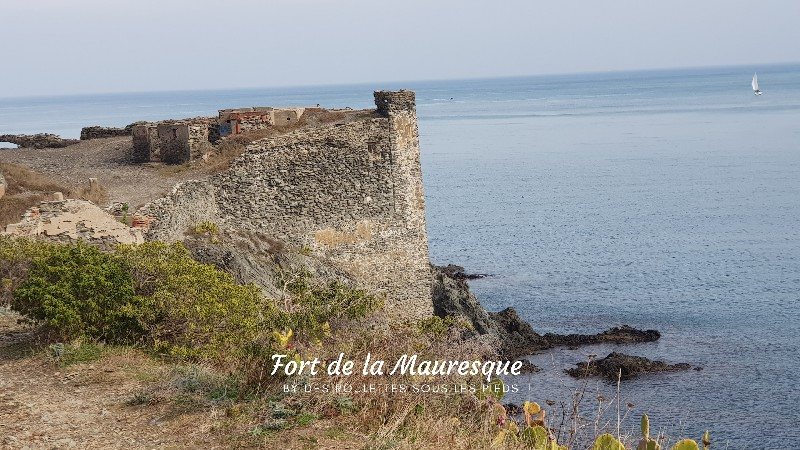 fort de la mauresque collioure port vendres