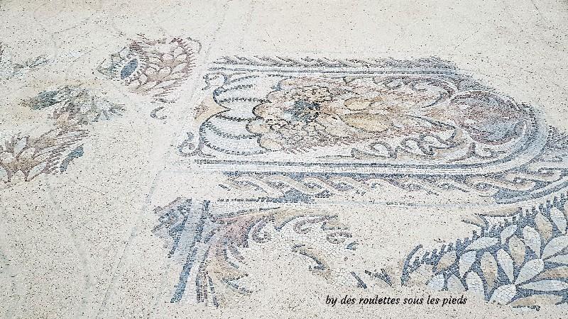 villa gallo-romaine de séviac mosaique aux fruits