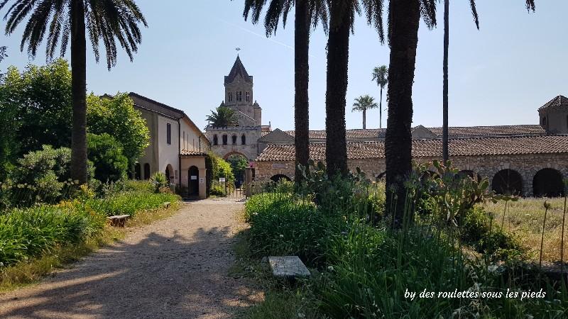 Visiter l'île Saint Honorat l'abbaye de Lerins