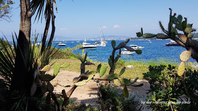 visiter l'île Saint Honorat la tonnelle